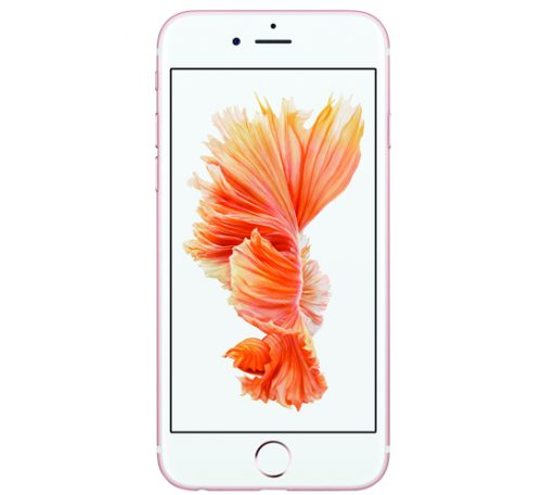 Apple iPhone 6s Plus Reparatur